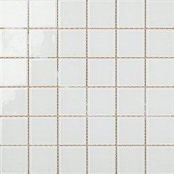 CAJA SNOWGLASS4830 x 30